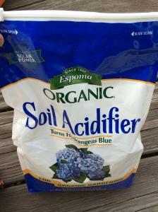 blue hydrangeas fertilizer spring summer fall garden home